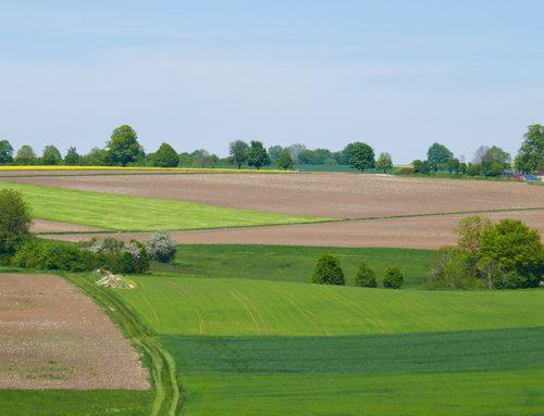 Kommunalworkshop regionaler Biotopverbund Neckar-Alb